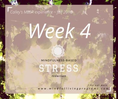 mbsr-week4