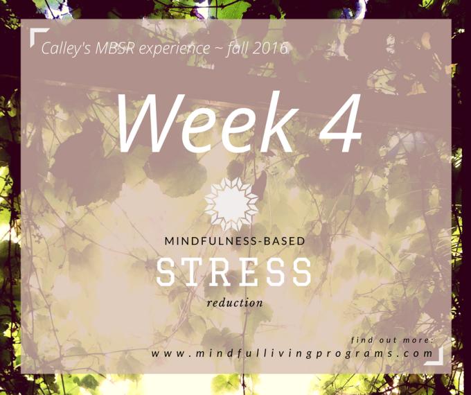 MBSR Mindfulness Week 4:Discipline