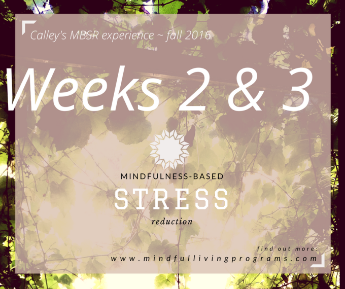 MBSR: Mindfulness Weeks #2 & 3