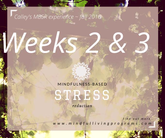 MBSR: Mindfulness Weeks #2 &3