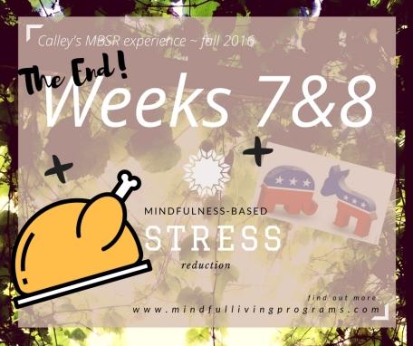 mbsr-week-7-8