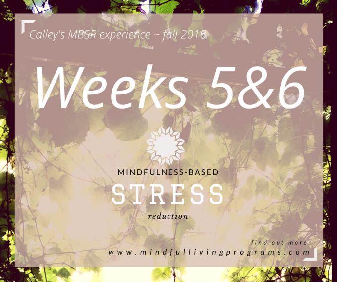 MBSR Mindfulness Weeks 5 & 6:TIME